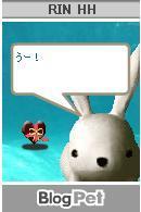 20050215_valentine_cousagi.jpg