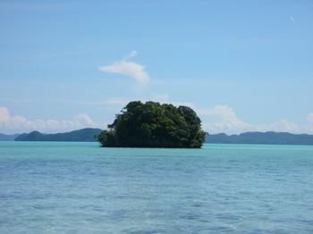 20051107_small_island.jpg