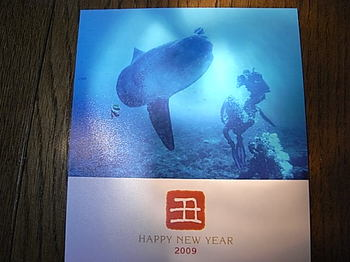 20090130_new_year_greeting_card.jpg
