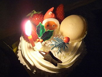 20091225_christmas_cake.JPG