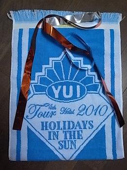 20101107_pennant towel.JPG