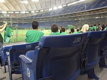 20120703_01_tokyo_dome.JPG