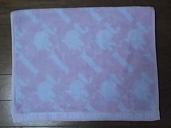 20121011_sports_towel.JPG