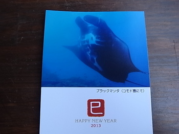 20130827_new_year_greeting_card.JPG