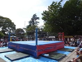 20140929_01_pro-wrestling.JPG