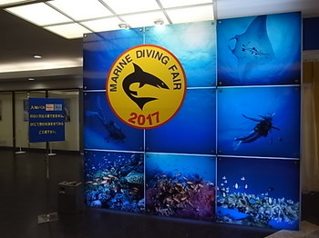 20170523_marine_diving_fair_1.JPG
