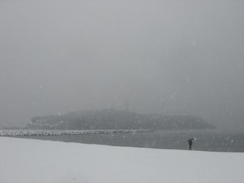 20080208_snow_enoshima.jpg