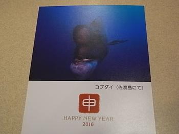 20161223_new_year_greeting_card.JPG