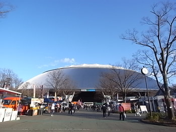 20170409_metlife_dome_2.JPG