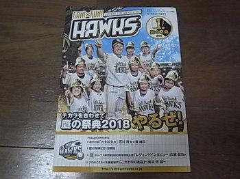 20180811_01_fan_fun_hawks.JPG